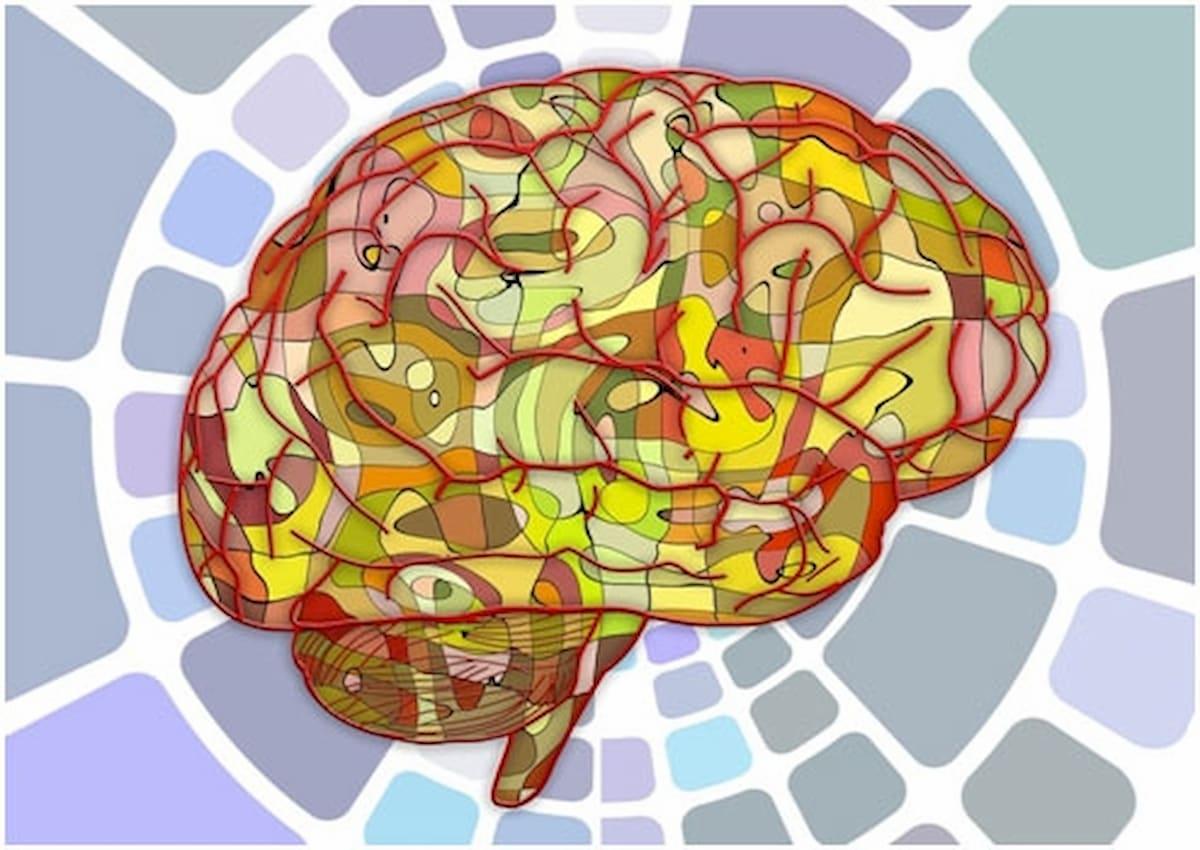 epilepsia sindromes epilepticos idiopaticos generalizados